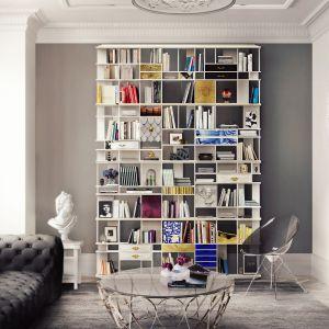 Coleccionista Bookcase